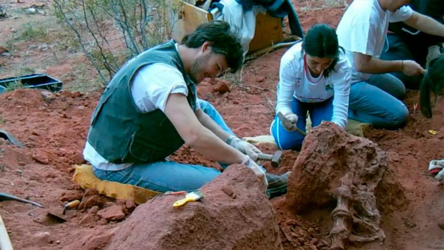 Hallan restos de nueva especie de dinosaurio saurópodo
