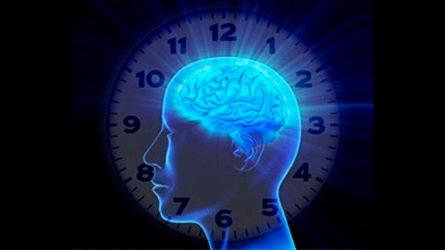 ¿Qué son los ritmos circadianos?