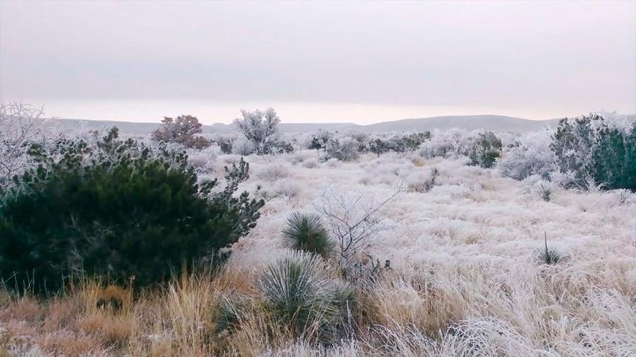 536, el peor año vivido por la humanidad: niebla polvorienta bloqueó al Sol y genero años de caos mundial y hambruna