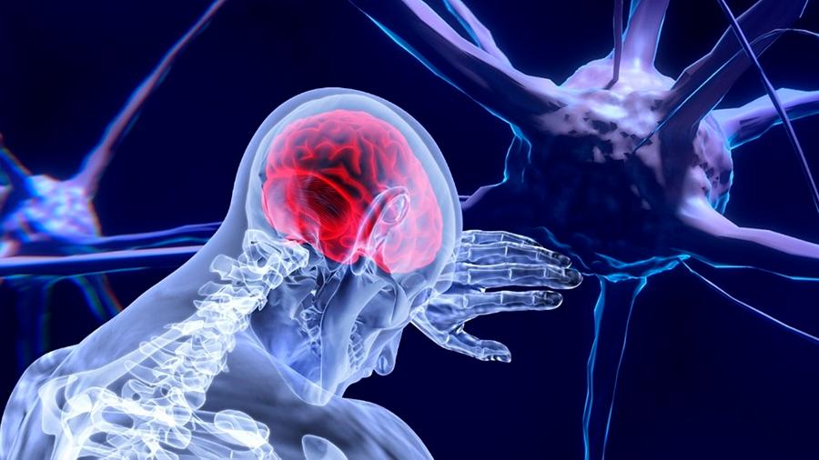 El cerebro archiva recuerdos siguiendo un orden secuencial