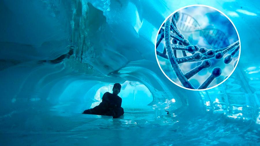 Hallan ADN irreconocible en cuevas de la Antártida