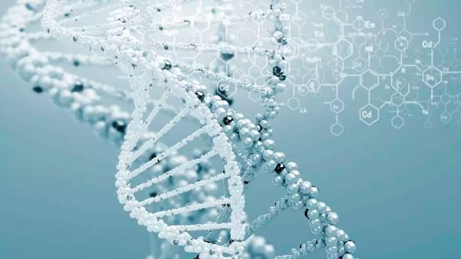 Científicos israelíes descubren mutación genética que podría prolongar la vida por 10 años