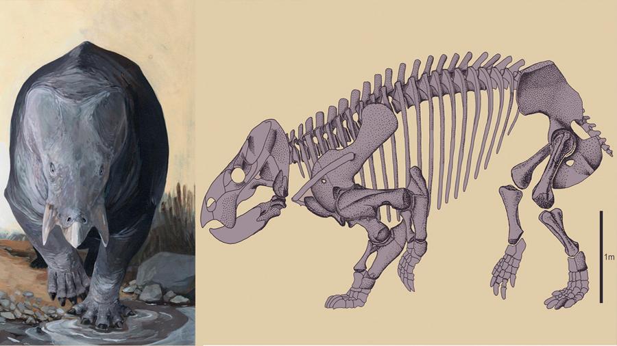Descubren restos de la colosal criatura XXL que pastaba con los dinosaurios