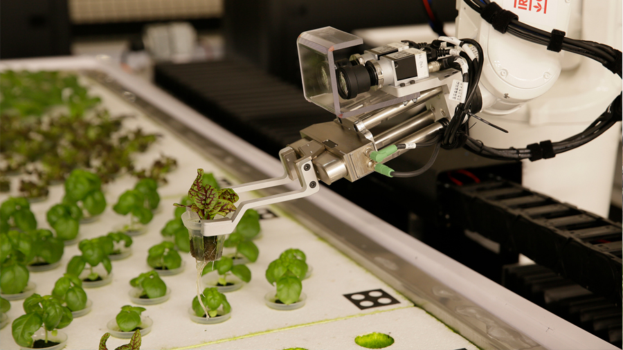 Nace la primera granja de cultivo operada con inteligencia artificial en Estados Unidos