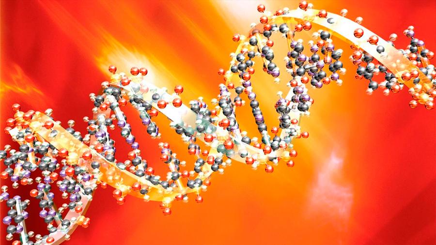 Cuando la ciencia alcanza a la ficción: historias del ADN