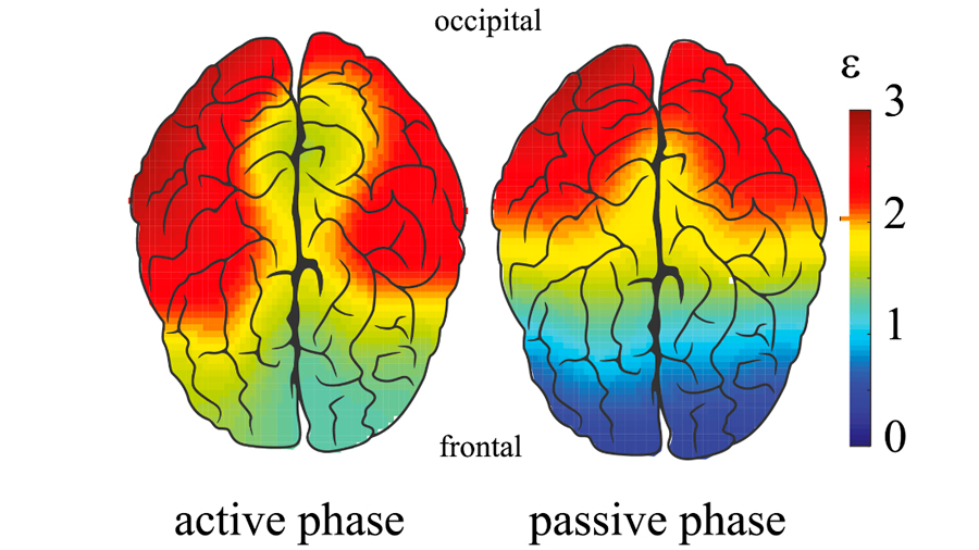 La personalidad deja su huella en el electroencefalograma