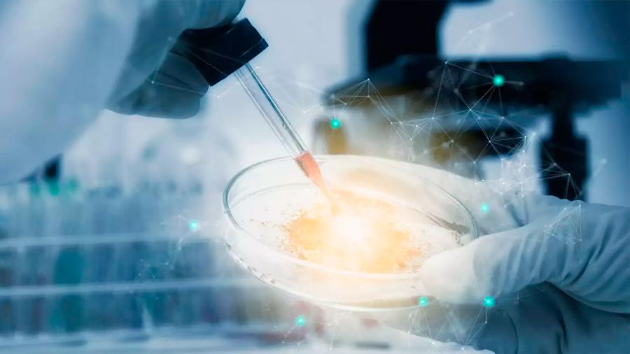"""Tumores mamarios """"reclutan"""" células originadas en la médula ósea para ayudarse a crecer"""