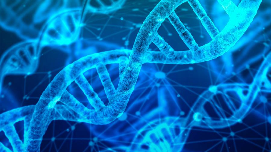 China exige suspender actividades de científicos implicados en caso de bebés modificados genéticamente