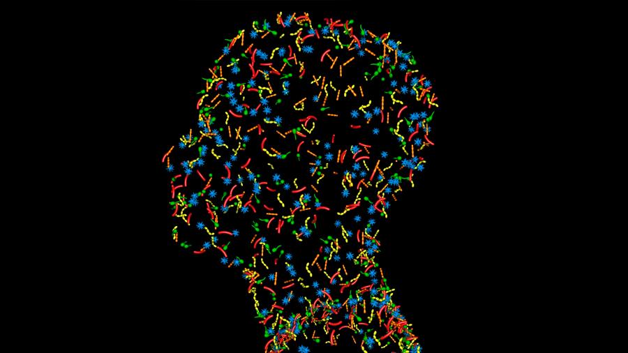 Los virus se apoderan de una parte del sistema inmunitario y la usan en contra nuestra