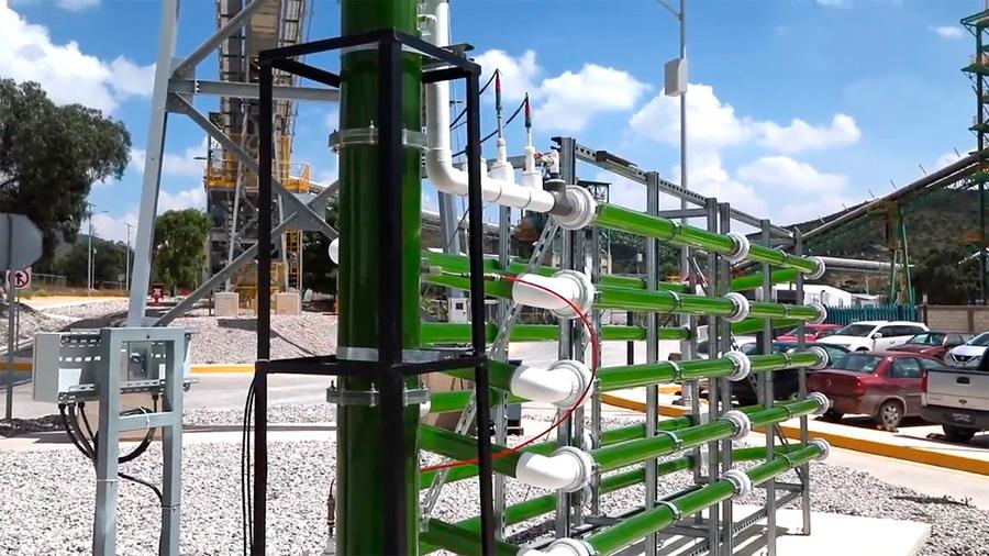 Diseñan científicos mexicanos biorreactor que captura de dióxido de carbono para la industria cementera
