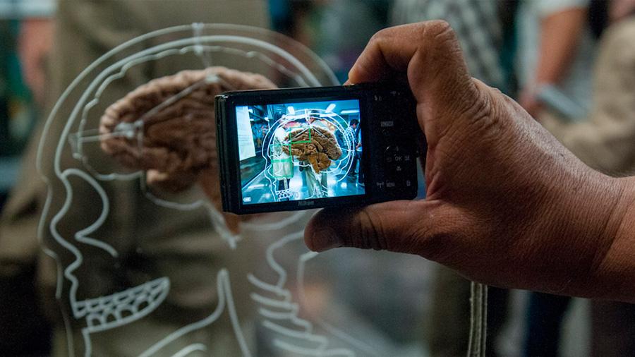 Cerebro de niños cambia por excesivo tiempo ante pantallas: estudio