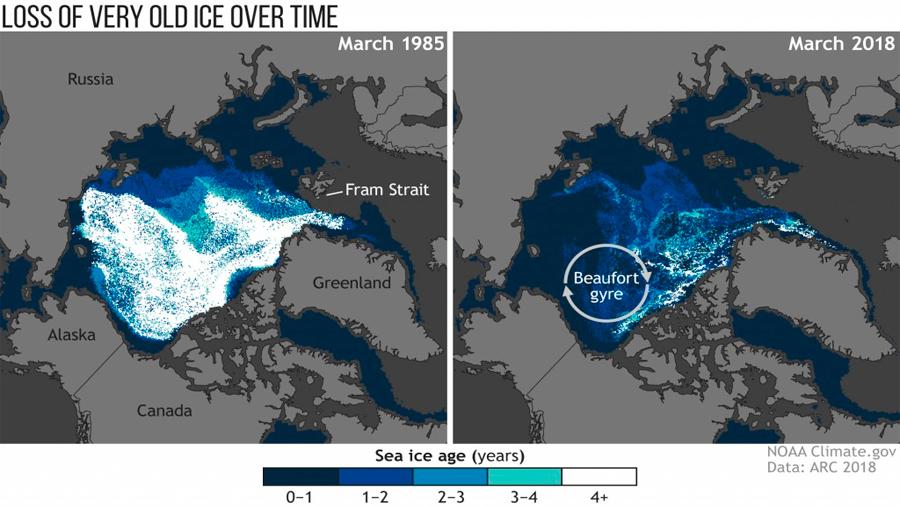 2018, segundo año más cálido en el Ártico desde 1900