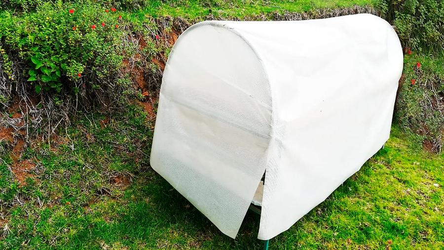Innovan emprendedoras mexicanas dispositivo que potencia condiciones de las colmenas para preservar vida de abejas