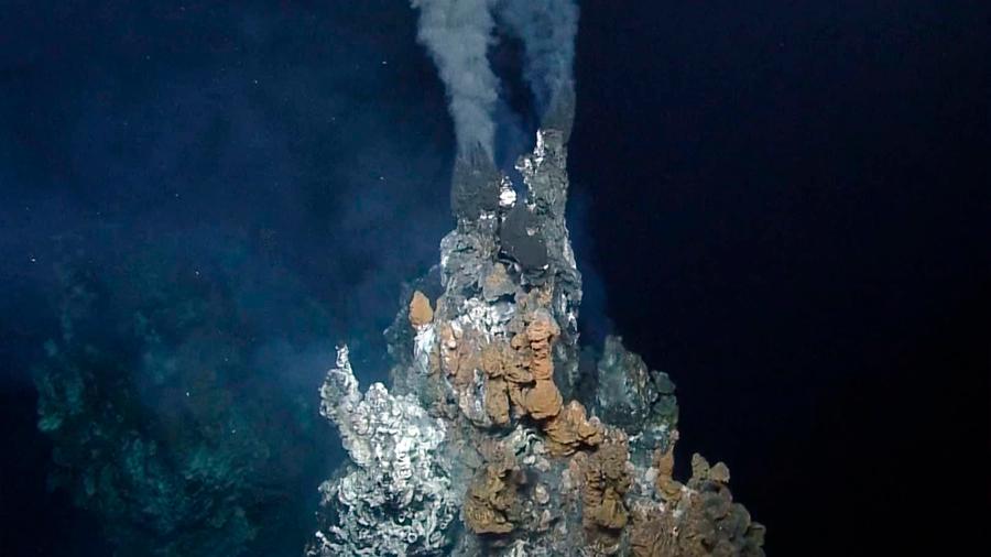 Descubren un nuevo ecosistema en el fondo del océano, hogar de especies nunca antes vistas