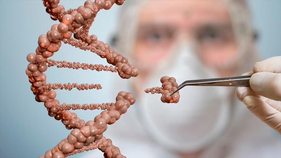Edición genética, bioseguridad y cambio climático, retos científicos para 2019, según 'Nature'