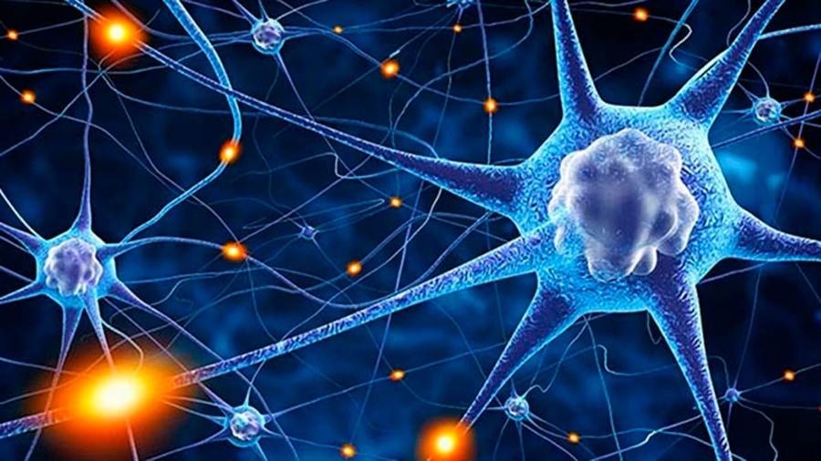Consiguen detener las convulsiones de una forma grave de epilepsia
