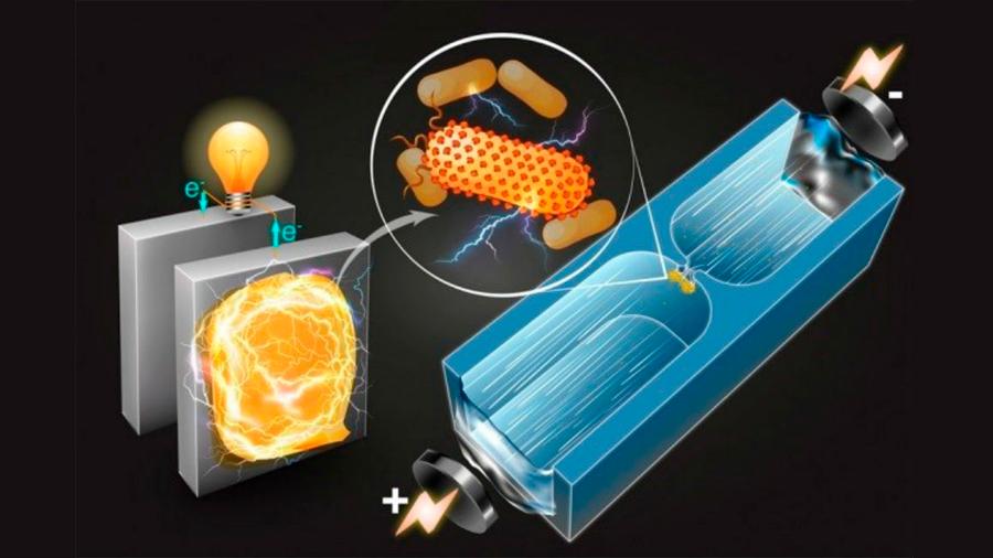 Ingenieros del MIT desarrollan técnica para generar electricidad con bacterias