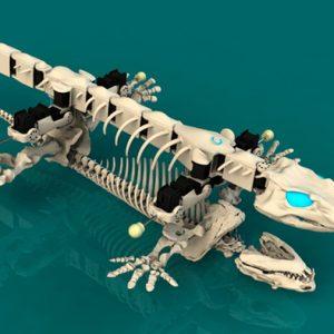 Un biorrobot permite entender los primeros pasos de los vertebrados