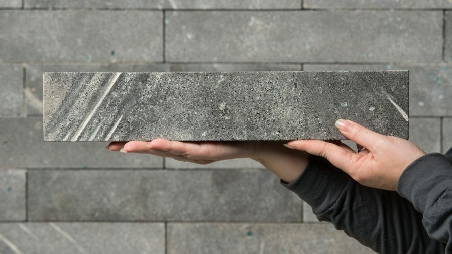 ¡A un lado, cemento! Los microbios son los ladrillos del futuro