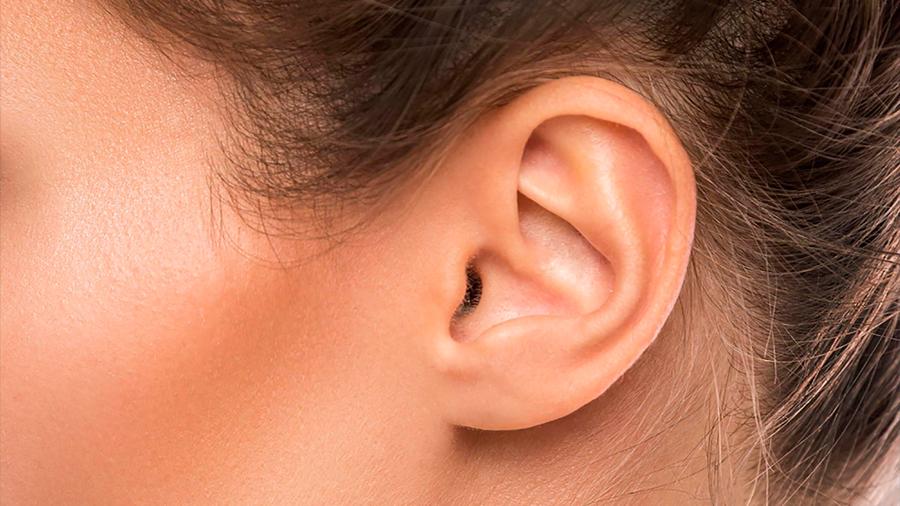 Científicos de MIT descubren secretos de extrema sensibilidad del oído humano