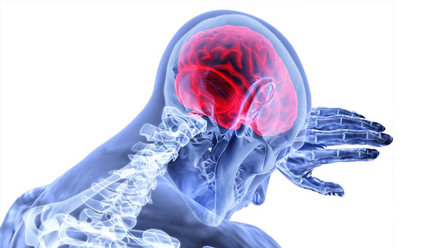 Científicos encuentran posible método para recuperar memoria en pacientes con alzheimer
