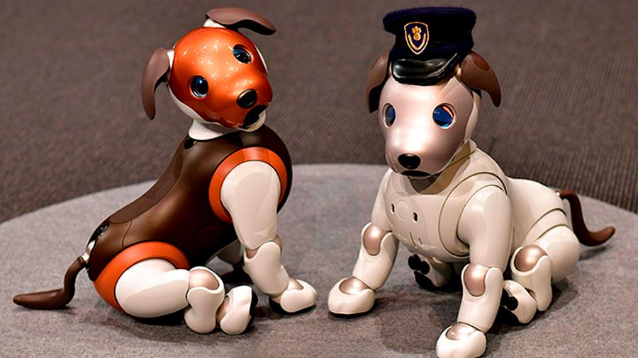 """Presentan versión del perro-robot Aibo en Japón que lo transforma en una """"mascota policía"""""""