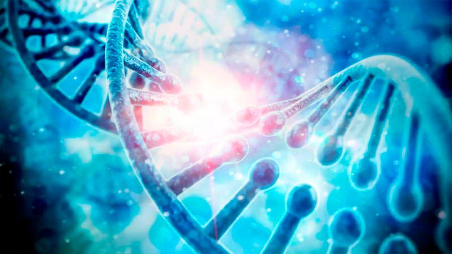 Publican el primer retrato completo de la secuencia del genoma humano