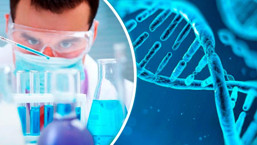 Científicos descubren cuánto tiempo podrías vivir gracias al ADN