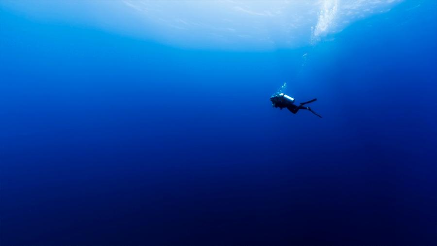 Los océanos se están volviendo más azules (y no es una buena noticia)