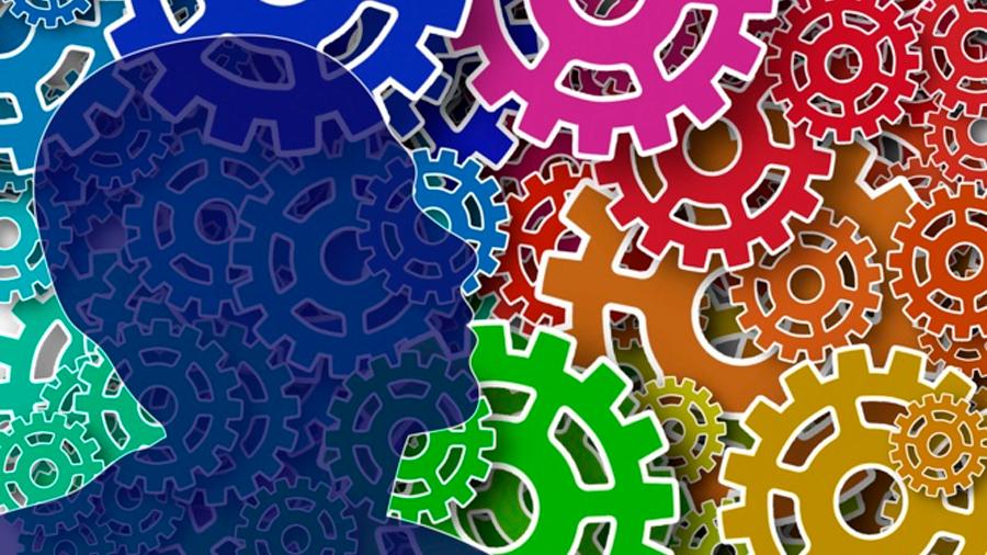 Descubren cómo el LSD desintegra la comunicación del circuito cerebral y propicia alucinaciones y altera la consciencia