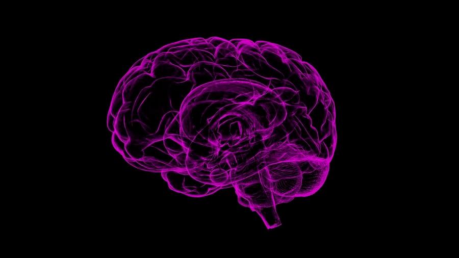 Cada vez más pruebas que el Alzheimer podría ser también, y en algunos casos, una enfermedad transmisible