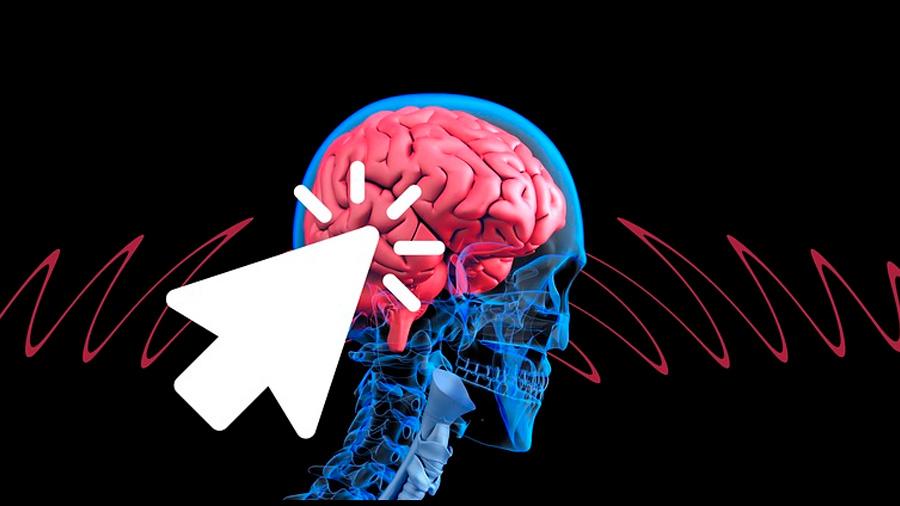 Identifican el patrón cerebral que origina la consciencia