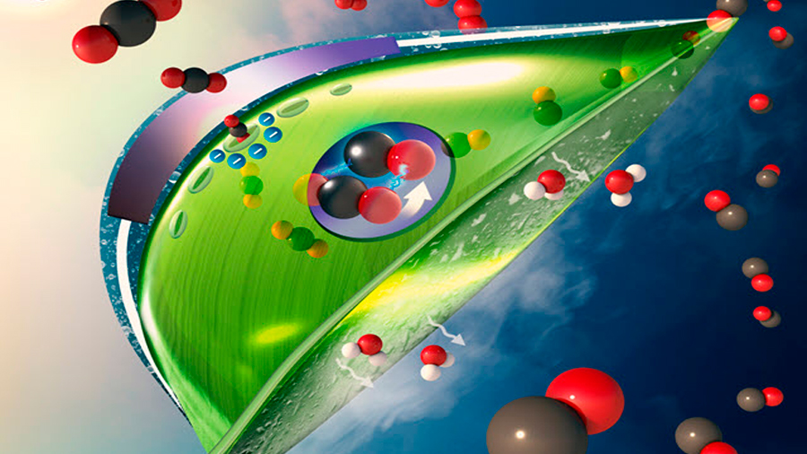 Una nueva hoja artificial convierte CO2 en combustible al aire libre