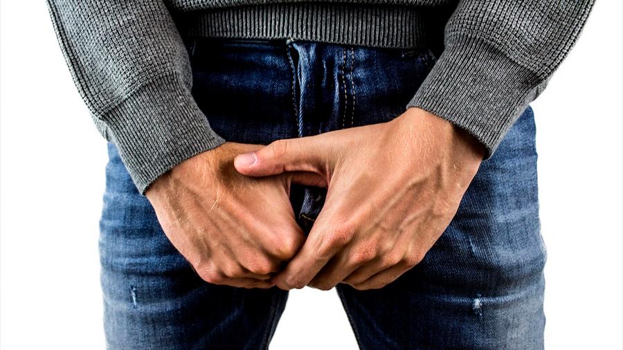 El pene necesita algo más que testosterona