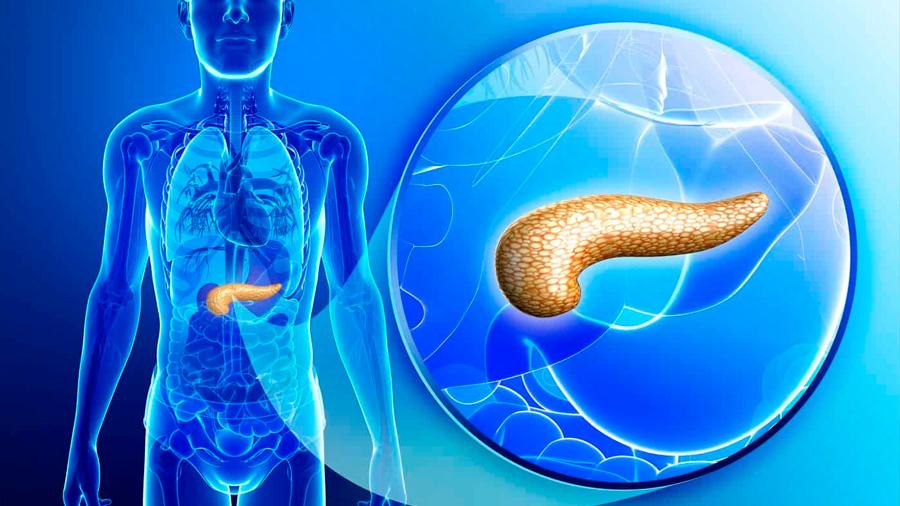 Cambian funciones de células para tratar la diabetes