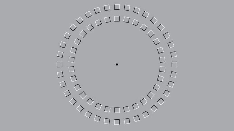 Conoce esta imagen que confunde a nuestras neuronas 'del movimiento'