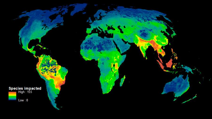 Primer mapa que muestra cómo los humanos destruyen la biodiversidad