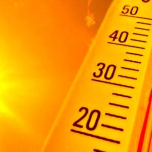 2019 registró el quinto febrero más caluroso en el mundo desde 1880
