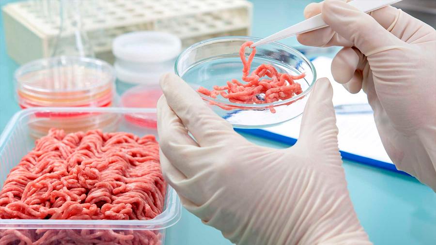 La carrera por producir carne artificial y cómo puede cambiar la forma en la que comemos