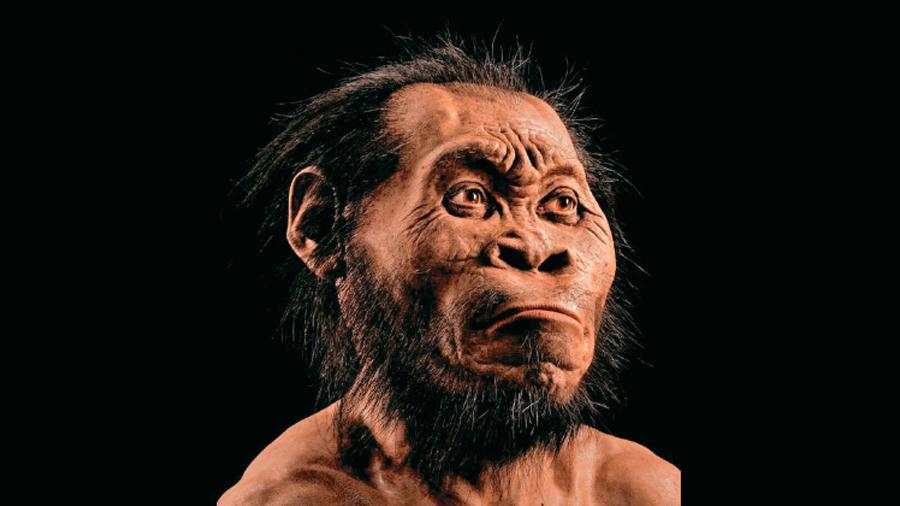 Pruebas de que los humanos como nosotros se extendieron desde Sudáfrica