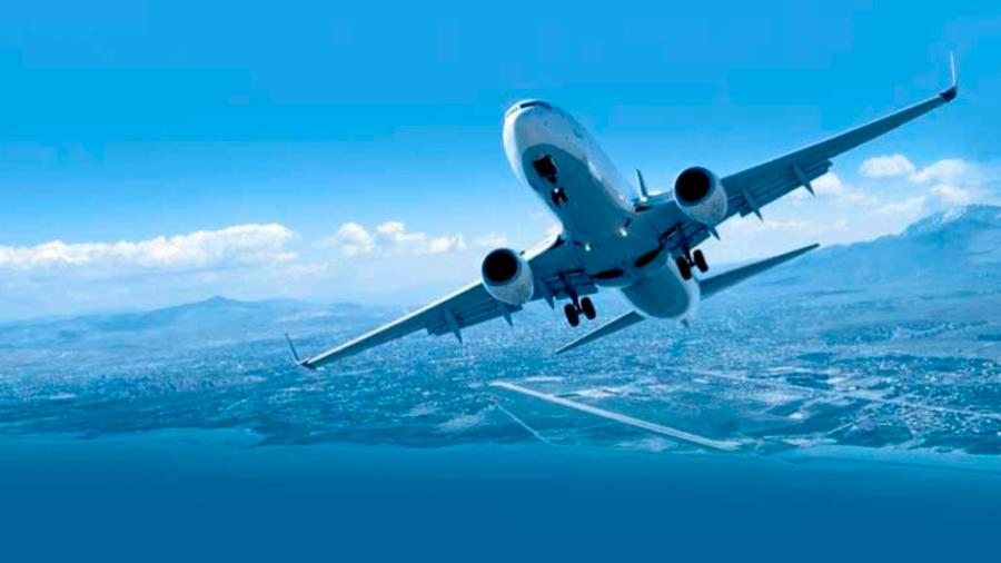 Desarrollan combustible para aviones a partir de restos de plantas