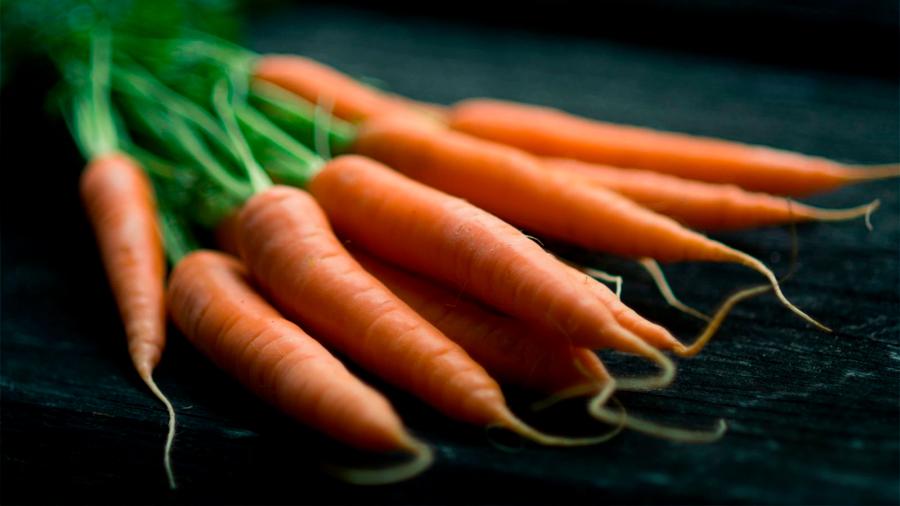 Científicos argentinos crean biocombustibles a partir de desechos de zanahoria