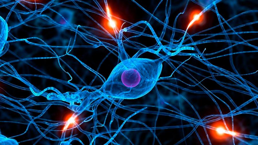 ¿Quiere borrar un mal recuerdo de su mente? Un anestésico le ayudaría