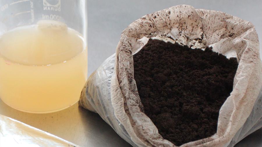 Desarrollan científicos mexicanos acelerador microbiano que transforma residuos de frutas y verduras en composta