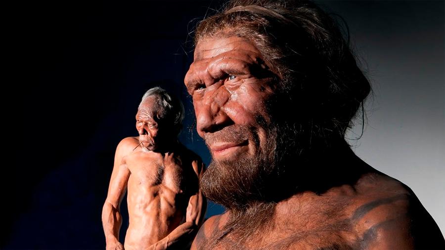 Pruebas de que denisovanos y humanos se aparearon hace solo 15,000 años