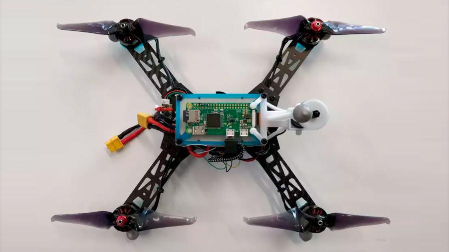 Robots inspirados en insectos no necesitan GPS para orientarse