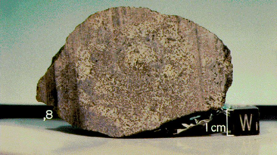 Descubren material orgánico en forma mineralizada en un meteorito marciano encontrado en 1978