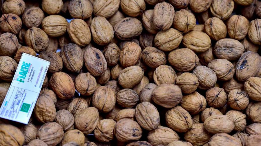 Un estudio demuestra que consumir nueces reduce el crecimiento de los tumores de mama
