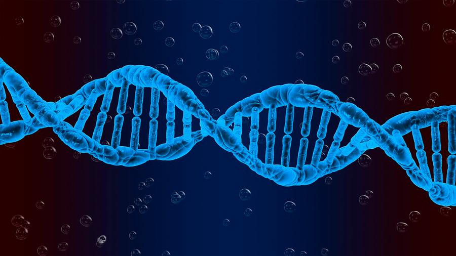 Identificadas las causas genéticas de la falta de sueño