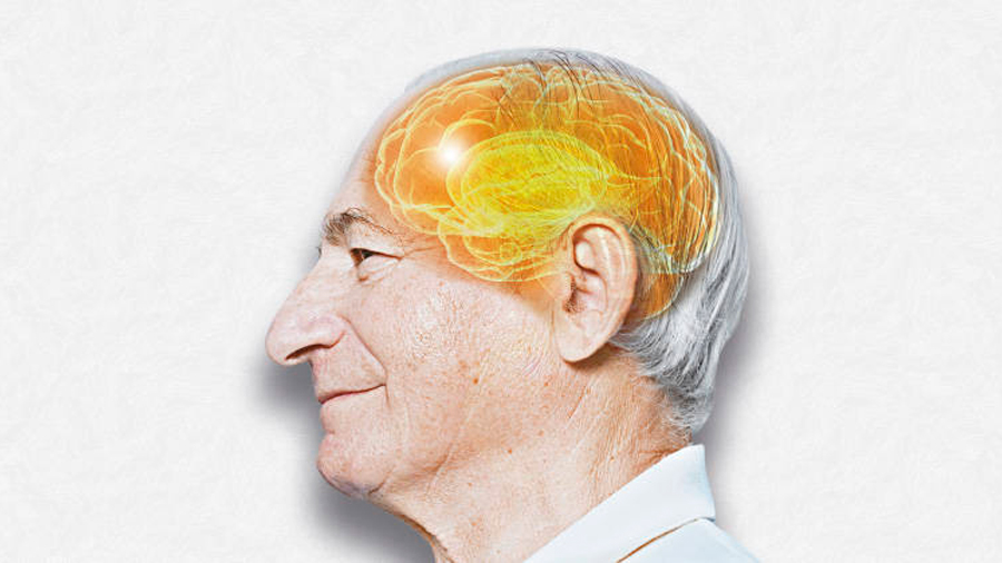 Hallan mayor espesor en partes del cerebro de ancianos con niveles altos de escolarización